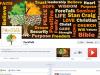 foretalk-facebook-design