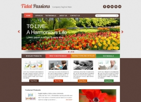 tidal-passions-2-website-design